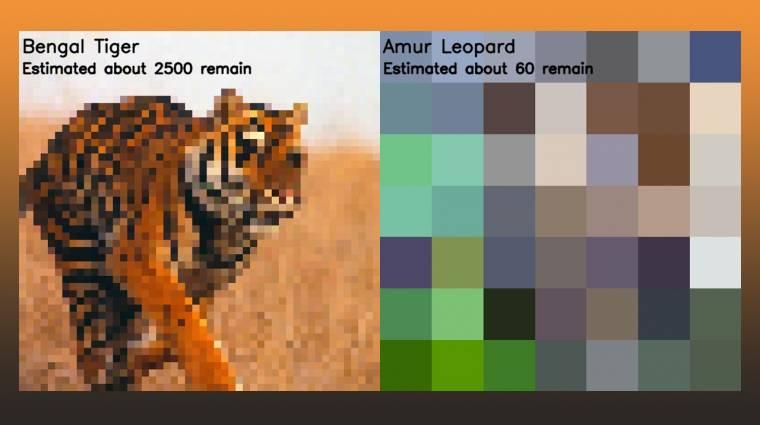 Szomorúan kreatív: ahány képpontot látsz a képeken, annyi maradt az adott állatfajból kép