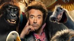 Itt van az első előzetes a Robert Downey Jr. szereplésével készült Dolittle-filmhez! kép