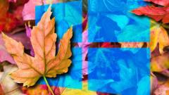 A novemberi Windows 10-frissítés új profi funkciói kép