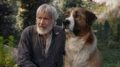 A vadon hívó szava szinkronos előzetes - Harrison Ford és a CGI-kutya kalandjai kép
