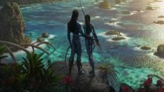 Befejeződött az Avatar 2 forgatása kép