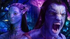 Ők már biztosan feltűnnek az Avatar folytatásokban kép