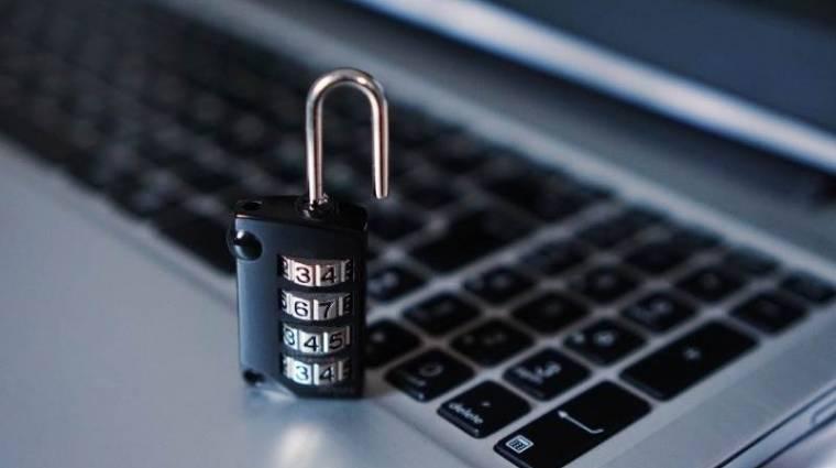 Nemzetközi szakértőkből álló szervezet alakult a koronavíruson nyerészkedő hackerek ellen kép