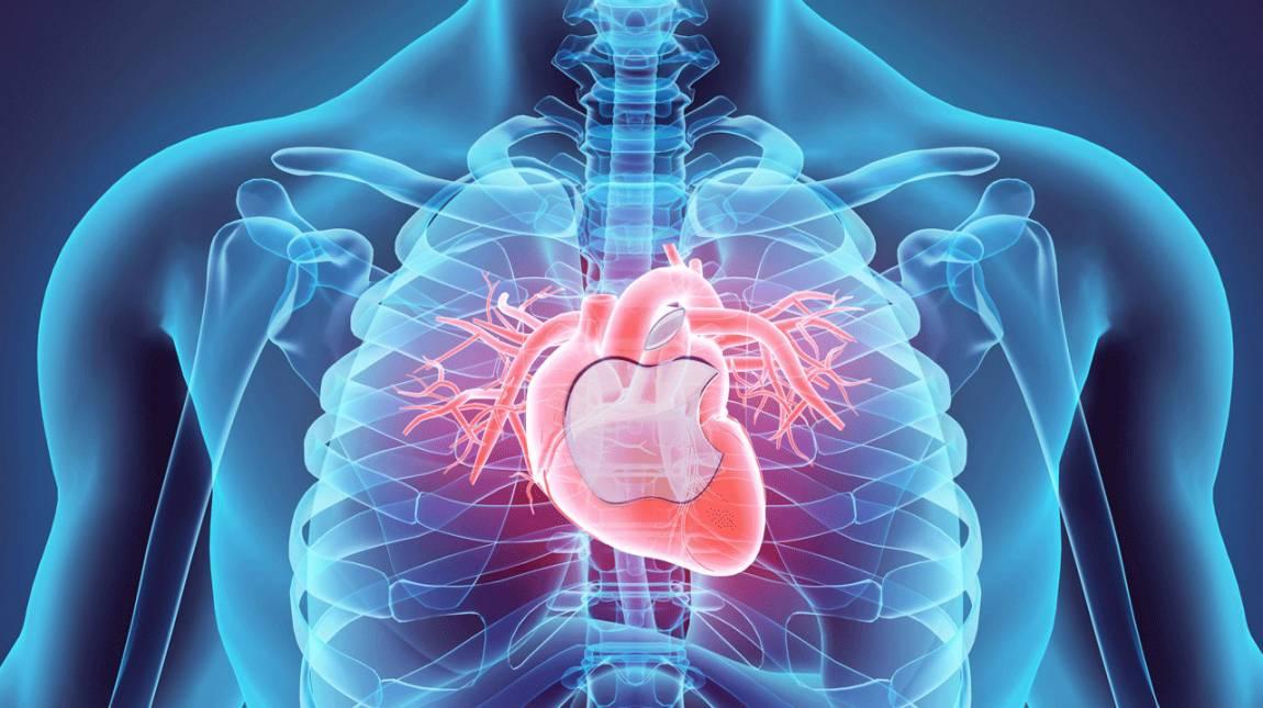 A szívverésedről ismer fel az Apple-féle okosotthon kép