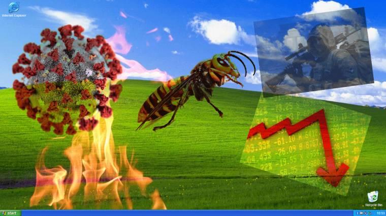 Majdnem biztos, hogy az egész 2020-as év Windows XP-n fut kép