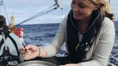 SAP programok az óceánok tisztaságáért kép