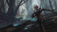 Witcher történelem 7. - ez történik a Vaják: A tó úrnője kötetben kép