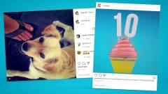 Ma tíz éves az első Instagram fotó: nézd meg te is! kép