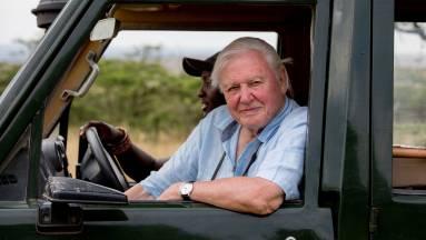 David Attenborough nagyon gyorsan otthagyta az Instagramot kép