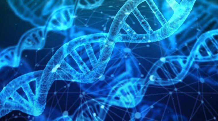 A kutatók szerint a genetika is szerepet játszhat az öngyilkosságokban kép