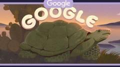 Ezért voltak a Galápagos-szigetek a Google kereső főoldalán kép