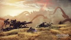 A Gwenthez hasonló társas is lesz a Horizon Forbidden Westben kép