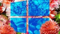 Így tudhatja meg, ha blokkolja gépén a Windows 10-frissítést a Microsoft kép