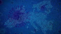 Mennyire viselte meg a koronavírus az IT-piacot? kép