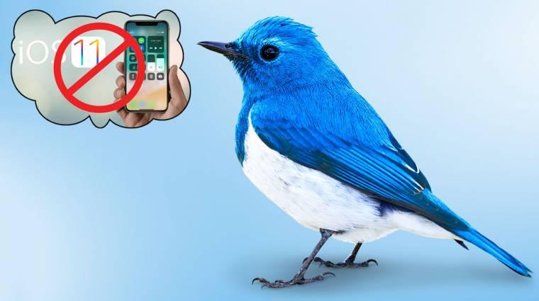 Eltűnik a Twitter a kiöregedő iOS verziókról kép