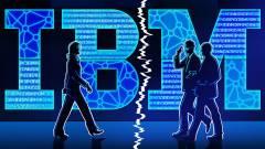Osztódással szaporodik az IBM kép