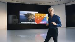 Az Apple alelnöke szerint komoly gondot jelentenek a maces kártevők kép
