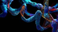 Nagy áttörést hozhat az egészségügyben az AlphaFold mesterséges intelligencia program kép