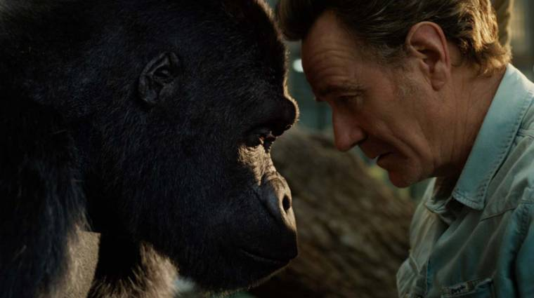 Előzetesen Bryan Cranston és a barátságos gorilla meséje, a The One and Only Ivan kép