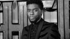 Elhunyt Chadwick Boseman, a Fekete Párduc sztárja kép