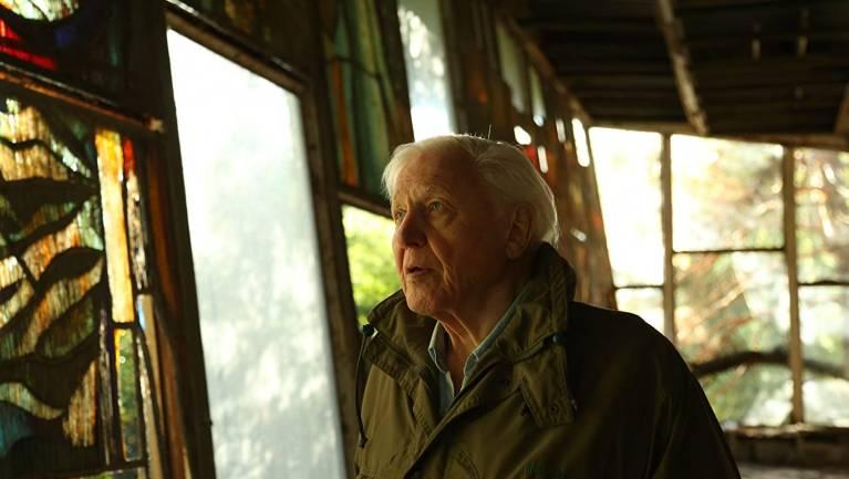 David Attenborough: Egy élet a bolygónkon - Kritika kép