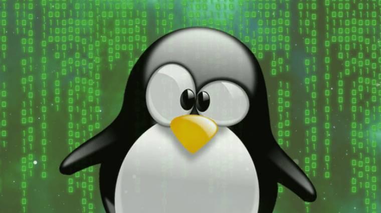 Súlyos biztonsági hibát talált a Linuxban a Google és az Intel kép