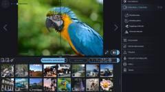 Ashampoo Photo Optimizer 2020 teszt - a fotók doktora kép