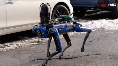 A New York-i rendőrség nyugdíjazza Digidogot, a disztópikus robotkutyát kép