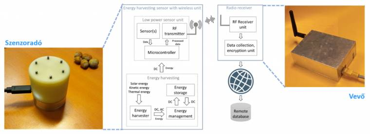 Self-sufficient sensor networks based on new technologies have been designed by EC researchers