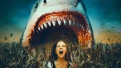 Kukoricásból támad a cápa a ZS-kategóriás horror, a Sharks of the Corn előzetesében kép