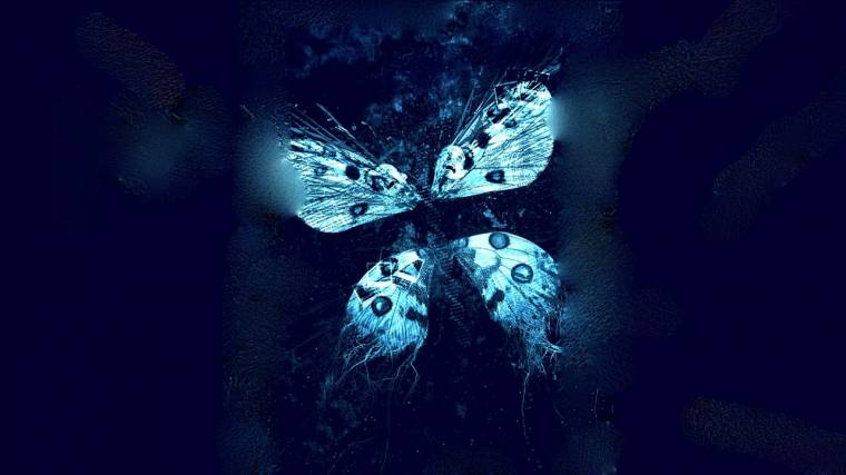 Digital butterfly effect