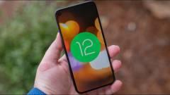 Automatikusan hibernálni fogja a nem használt alkalmazásokat az Android 12 kép