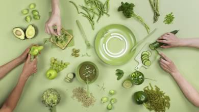 Az SZTE jár élen az élelmiszeripari digitalizációban kép