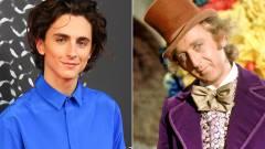 Timothée Chalamet lesz Willy Wonka a Charlie és a csokigyár előzményfilmben kép