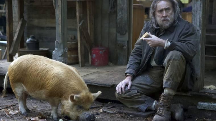 Pig - Kritika kép