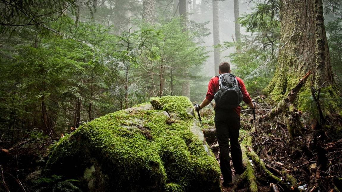 Természetjáró teszt - ha túrázni indulsz, ez a te appod kép