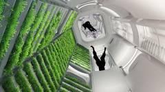 Jeff Bezos üzleti parkot építene a világűrben kép