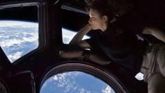 A NASA salátát termeszt az űrben kép