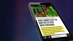 Blackberry: nem kell bedőlni a negatív címeknek kép
