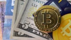 7,5 millió dollár értékű bitcoin lapul valahol egy brit szemétlerakó mélyén kép
