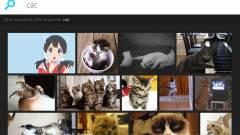 Hogyan tegyünk közzé GIF-eket a Facebookon? kép