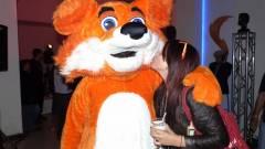 Mennyire biztonságosak a Firefox kiegészítői? kép