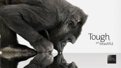 Itt az antibakteriális Gorilla Glass 3 kép