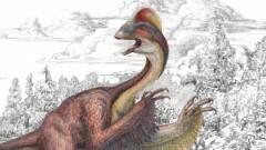 Csirke a pokolból: eddig ismeretlen dinoszauruszfajt találtak kép