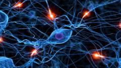 Agyi implantátummal kezelnék a mentális betegségeket kép