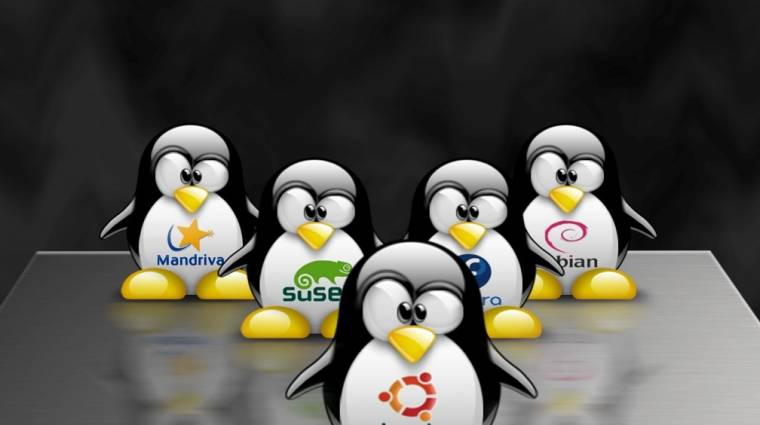 Melyek a legnépszerűbb Linux-disztribúciók? kép