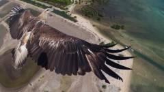 Itt vannak a drónos fotóbajnokság győztesei kép