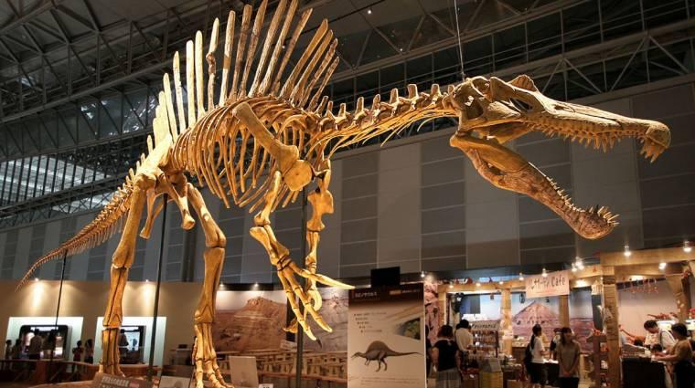 Nem a T. Rex volt a világ legnagyobb ragadozó dinoszaurusza kép