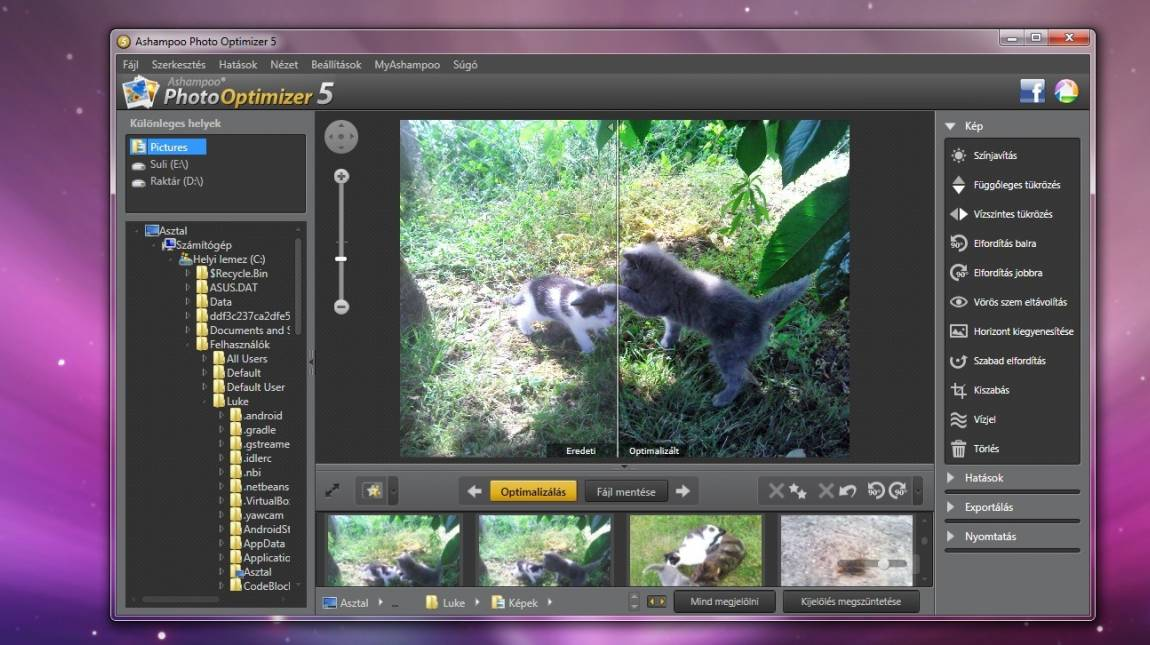 Ashampoo Photo Optimizer 5 teszt kép