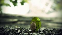 5 funkció, ami mindegyik androidos eszközre kellene kép